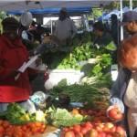 East New York Farmers Market celebrates 10 years!