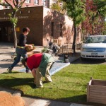 Cortelyou Rd. Park: placing sod