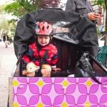 Cortelyou Rd. Park: very friendly Bella Bike