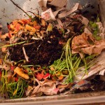 Future Compost