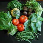 Flatbush Farm Share CSA!