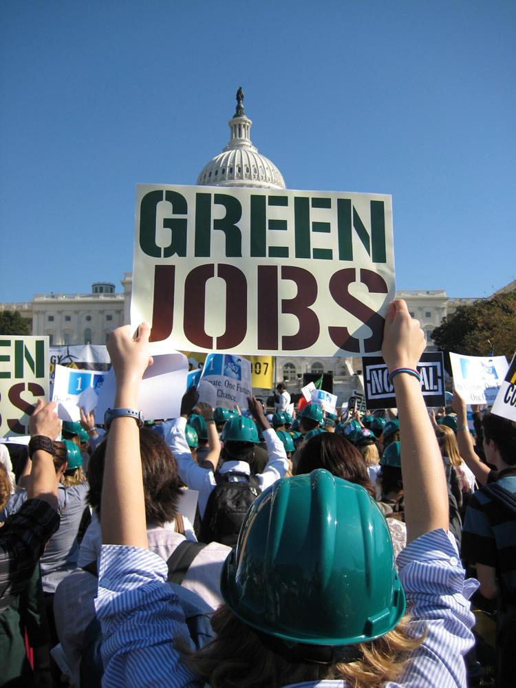 green collar job career fair at flatbush ymca