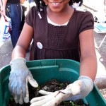 Greening Flatbush: Garden Where You Are