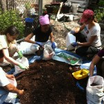 Summer Garden and Compost Open Hours!