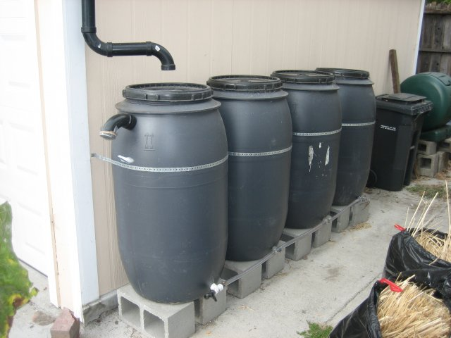 Build A Rainwater Harvesting System With Us Sustainable