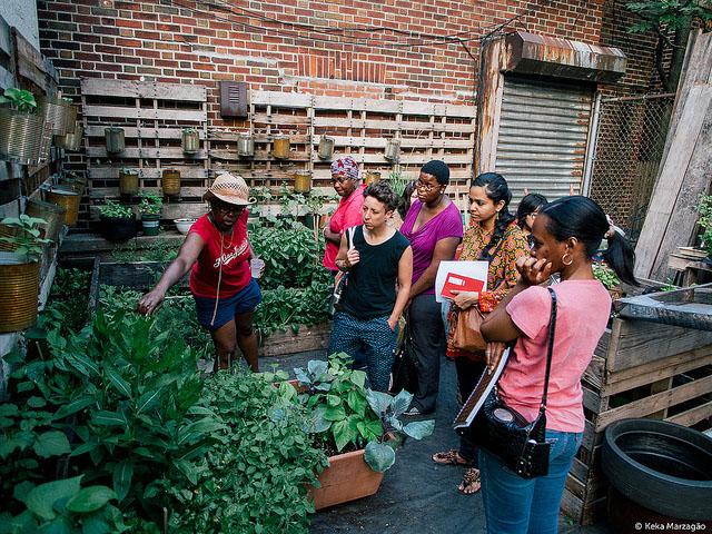 Healing Herb Garden tour